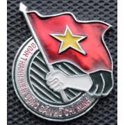 Значок -  Вьетнамский комсомольский значок